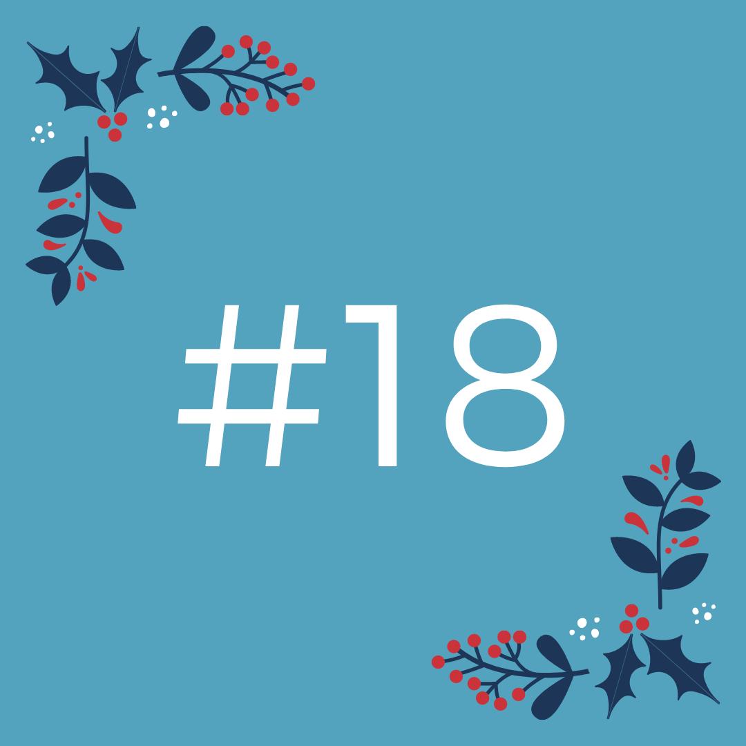 #18 Komentiranje nalog v spletni učilnici Moodle