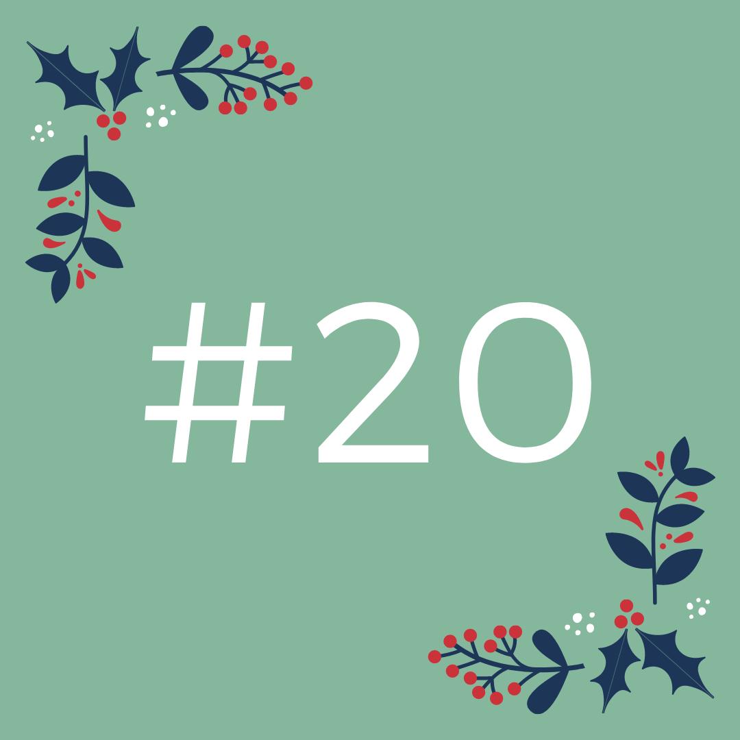 #20 Ocenjevanje z ocenjevalno lestvico