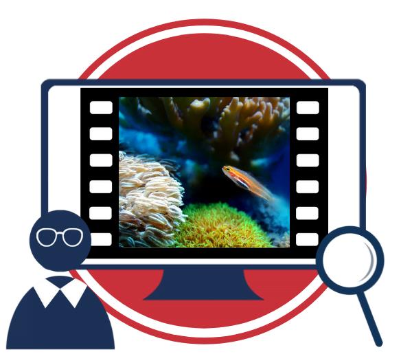 Uporaba videoposnetkov na področju morske biologije