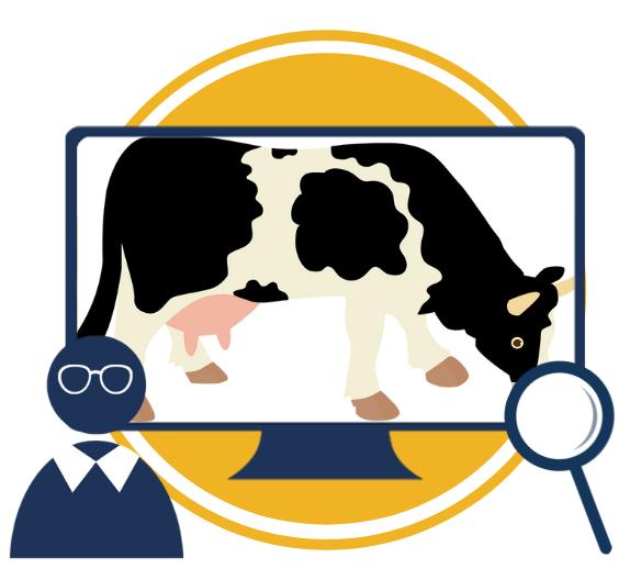 Simulacijski model metabolizma krave Molly