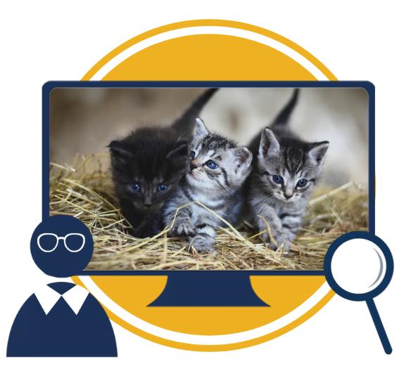Osnovne klinične veščine za male živali